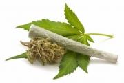 Депутат предлага легализиране на медицинската марихуана
