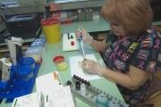 Инфекцията от морбили се предава в пловдивските болници