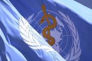 На Световната здравна асамблея ще обсъждат глобален план за действие по отношение на ваксините