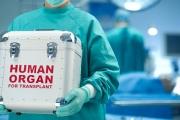 Седма за тази година чернодробна трансплантация извършиха във ВМА