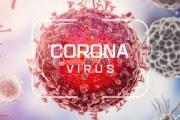 Коронавирус: стартира порталът на ЕС за оперативна съвместимост