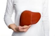 Как черният дроб се възстановява след алкохол