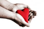 Органите на 44-годишен донор спасиха четирима