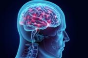 Против епилепсията: Правят карта на мозъчната кора, по подобие на Google Maps