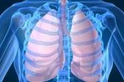 Национална стратегия за белодробните болести до март 2014 г.