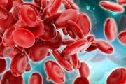На днешния ден е направен първият успешен опит за кръвопреливане с човешка кръв