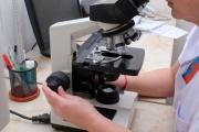 Диагноза - само с микроскоп!