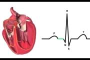 Как да докажем прецизно виталитета на миокарда
