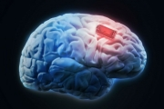 Нов кръвен тест открива рак на мозъка с точност 87%