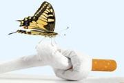 Поне за ден без тютюнев дим, призовава кампания на МЗ и РЗИ