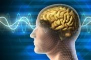 Особености на различните видове памет