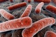 Удължиха срока на програма за борба с туберкулозата