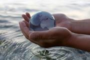 6-8 млн. души умират годишно от болести и бедствия, свързани с водата