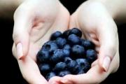 Боровинките понижават холестерола