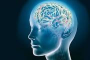 Българската асоциация по невросонология и мозъчна хемодинамика организира национален конгрес