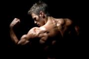 Двигателните единици в един мускул са от 50 до 2000