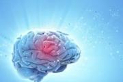 Химиотерапията за глиобластом може да е по-ефективна сутрин, отколкото вечер