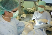 Д-р Петър РУЕВ, специалист УНГ: В Стара Загора вече се прави ендоназална синус хирургия с навигационна система