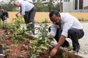 Етиопия засади 353 млн. дръвчета за 12 часа