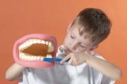 Забавни книжки учат децата как да се грижат за здравето на зъбите