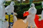 СЗО: Ебола е най-тежката здравна заплаха